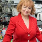 Prof. Laura Lechuga